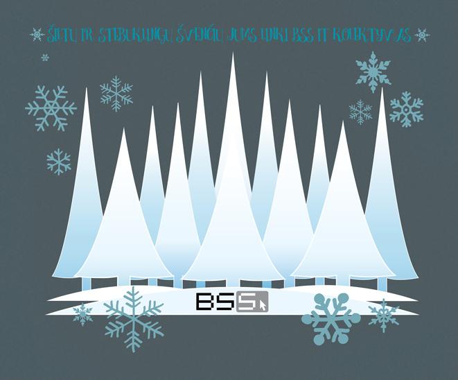 BSS IT Kalėdos 2016